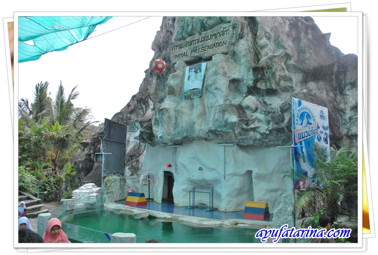 Seal Show= Songkhla Zoo