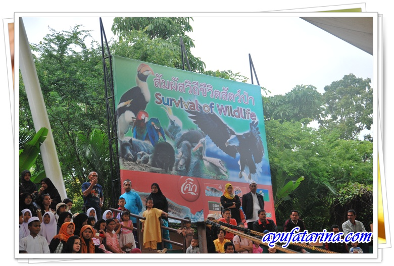 Survival of the Wild Signborad - Songkhla Zoo