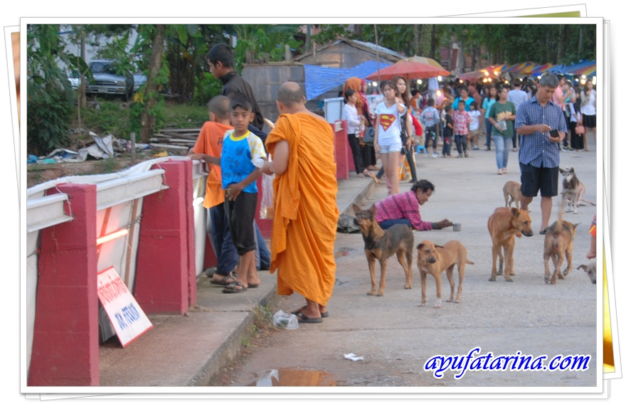 Floating Market - Dogs